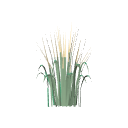 3d_decorative_grass.rfa