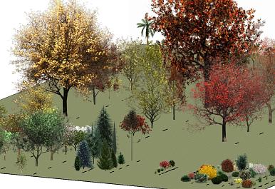CAD Forum - Block-model: Vegetation family library (Foliage, trees